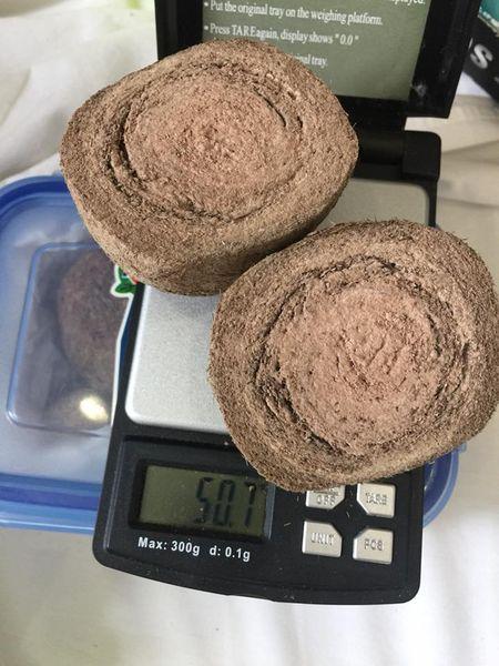 batu landak powder asli