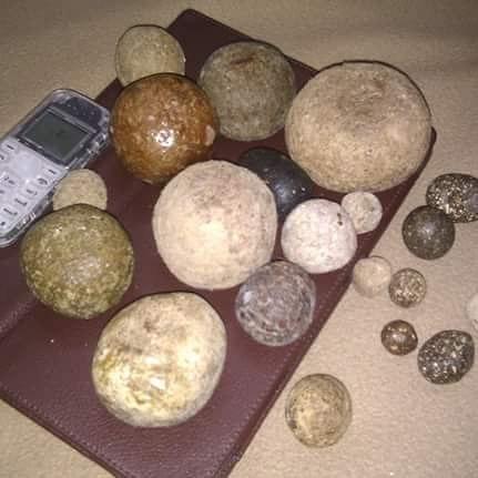 Penjelasan Lengkap Khasiat Batu Landak Untuk Dunia Pengobatan