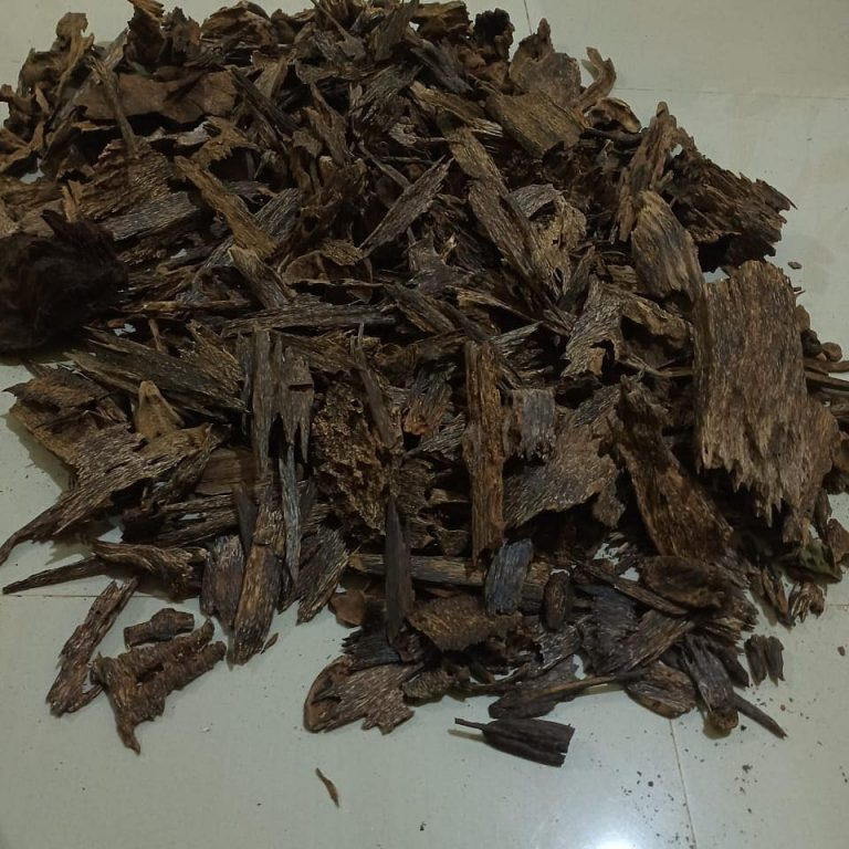 AGARWOOD OIL EXTRACTION
