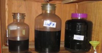 Pure Agarwood Oil From Thailand: สมุนไพรไทยจากไม้กฤษณา มีสรรพคุณทางสมุนไพรที่ใครๆอีกหลายคนไม่เคยทราบมาก่อน