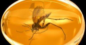 13 Khasiat Getah Amber Untuk Kesehatan Dan Supranatural