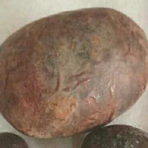 Harga Batu Landak Asli - Batu Mania