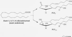 Sumber dan Fungsi Lemak Bagi Tubuh, Kegunaan, Kimia