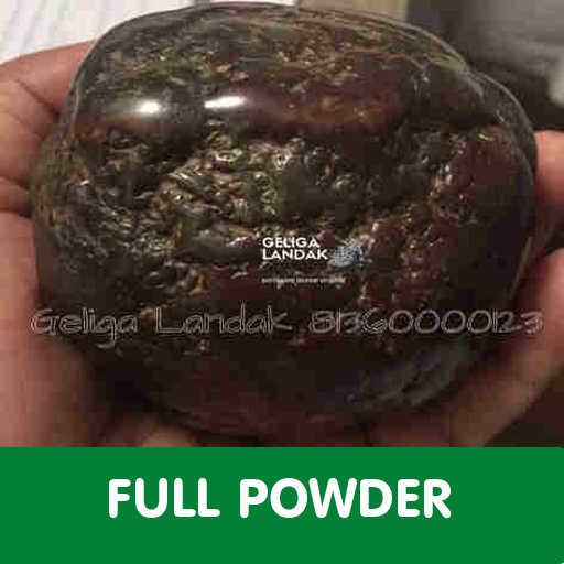 Batu Landak Full Powder
