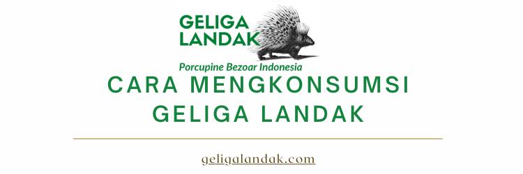 Tips Cara Mengkonsumsi Geliga Landak